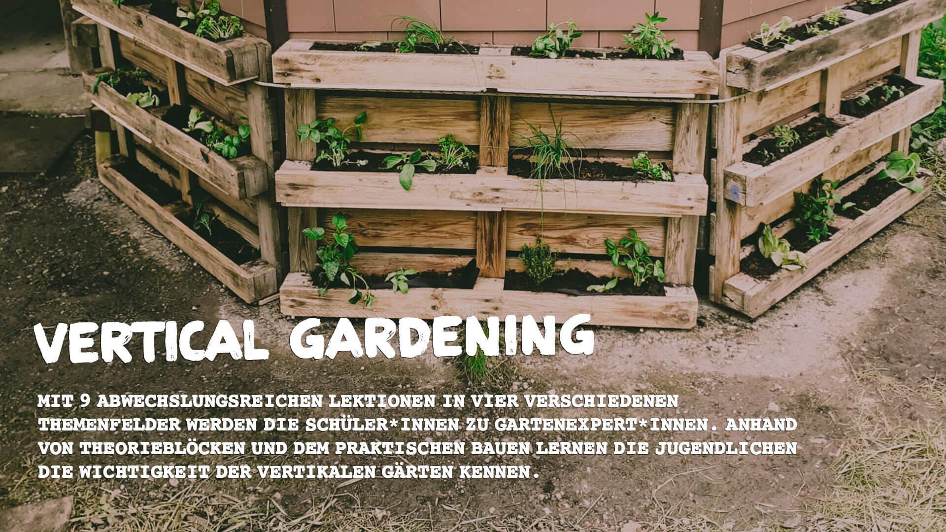 Vertical Gardening Unterrichtspaket GORILLA